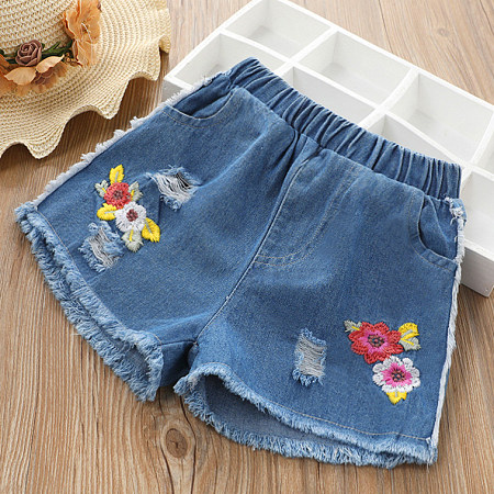 Botanical Embroidered Shorts