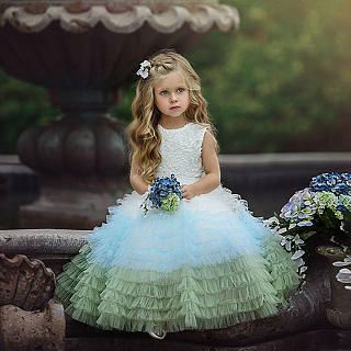 Color Block Sleeveless Tulle Princess Dress