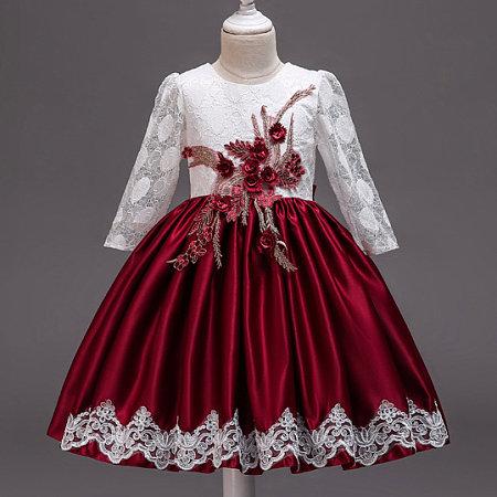 Flower Applique Lace Long Sleeve Self Tie Back Princess Dress