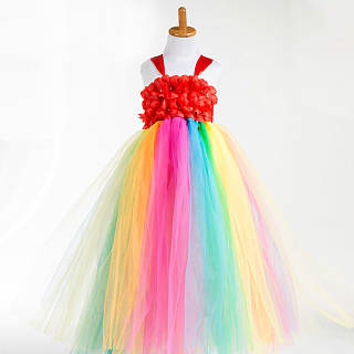 Gorgeous Rainbow Tulle Cami Trailing Princess Dress