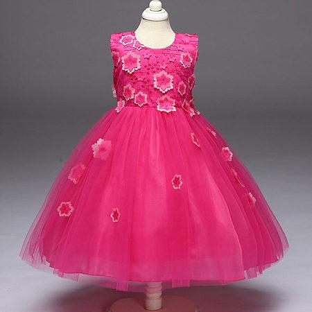 Flowers Appliques Tulle Princess Dress