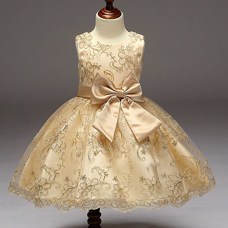 Embroidered Flowers Bowknot Princess Dress