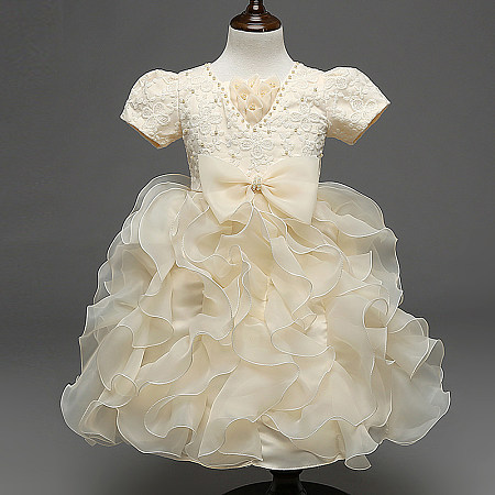 Champagne Beads Embellished  Embroidered Flowers Princess Dress