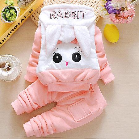 Thickened Plush Bunny Pattern Zipper Hooded Set