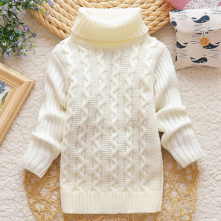 Knitted Solid Color Roll Neck Sweater